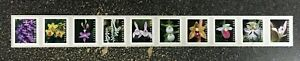 2020USA #5435-5444 Forever Wild Orchids - Plate Number PNC Coil Strip of 10 Mint