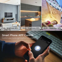Smart Breaker Module LED Dimmer Switch Compatible with Alexa Echo Google Home
