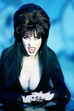 Hollywood Celebrity Art Photo Poster:  ELVIRA |22 inch by 36 inch| 08 80'S