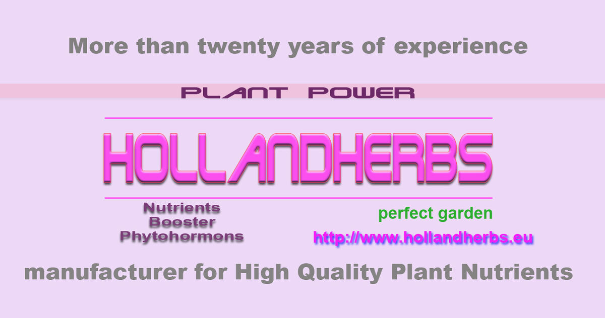 Hollandherbs