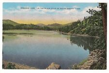 SHERIDAN LAKE PINES Artificial  City Black Hills South Dakota Postcard SD 1951