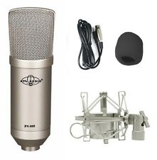 NEW Professional Condenser Mic Bundle PK-888 with Shock Mount & Filter Sponge