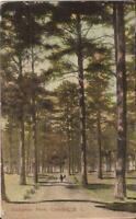 Camden, SOUTH CAROLINA - Hampton Park - 1911