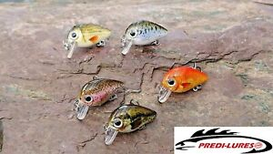 Trout Perch Lure Pack (5 lures) 30mm 1.8g #10 Treble Floating Shallow Wobbler