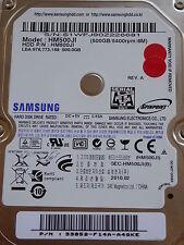 Samsung HM500JI | P/N: 33852-F14A-A4QKE | 2010.02 | 500 GB disco rigido