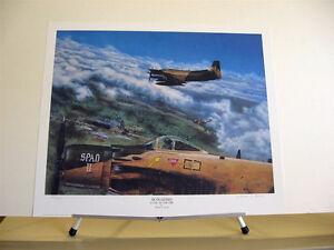 Douglas A-1 Skyraider Spad Sandy Vietnam War William Young Aviation Art Print