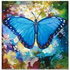 Simon Bull HAND SIGNED Limited Edition Butterfly Blue Morpho Canvas UK/US artist