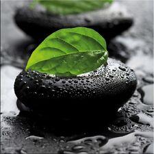 artissimo Glasbild 30x30cm Bild aus Glas Wandbild Wellness Zen Steine Blatt grün