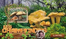 Togo 2016 MNH Mushrooms 1v S/S Champignons Boletus Fungi Stamps