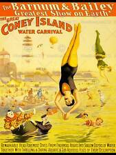 BARNUM BAILEY CONEY ISLAND WATER CARNIVAL CLOWN DIVE USA ART PRINT POSTER BB7700