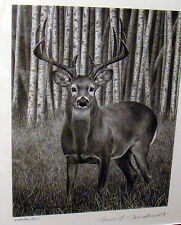Whitetail Deer art Drawing Print by Bruce S. Garrabrandt Signed - Hunting Theme