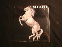 STALLION - S/T - 1976 Vinyl 12'' Lp./ Sealed New/ Prog Southern Hard Rock AOR