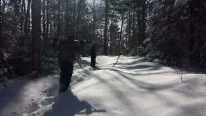 Guided Maine Snowshoe Hare (Rabbit) Hunt
