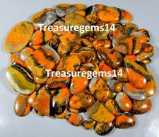 250 CT WHOLESALE LOT NATURAL BUMBLE BEE JASPER MIX CABOCHON INDONESIA GEMSTONES