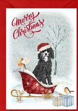 """Cavapoo / Doodle Dog A6 (4"""" x 6"""") Christmas Card (Blank inside) by Starprint"""