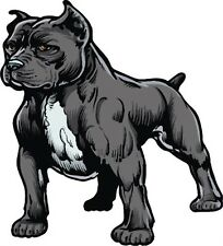 Peel-off - Pitbull Car Sticker - Window - Auto Decal 12 inch