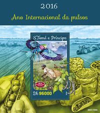 Sao Tome & Principe 2016 MNH UN FAO Int Year of Pulses IYP 1v S/S Plants Stamps