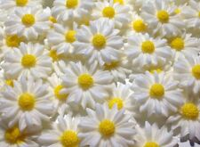 12 Edible Daisies Easter / Mothers Day Flowers Birthday Cake Topper Decorations