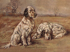 ENGLISH SETTER CHARMING DOG GREETINGS NOTE CARD TWO BEAUTIFUL DOGS