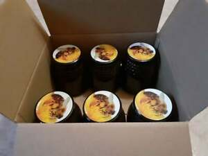 6 kg Miel de encina casera pura sierra de Salamanca cosecha propia mielato tarro