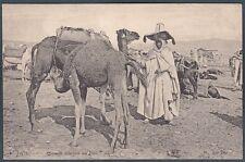 ALGERIA 02 Algérie CAMMELLI ETHNIC ETNIQUE COSTUMES SCENES TYPES Cartolina