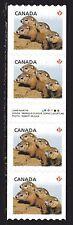 2013 Canada SC# 2604i Baby Wildlife Woodchucks Gutter strip of 4 Lot# C 483 M-NH