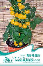 1 Bag 30 Seed Yellow Tomato Lycopersicon esculentumB039