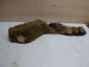 authentic 1950's vintage Davey Crockett Coonskin Cap Real Fur Tail Raccoon MINT