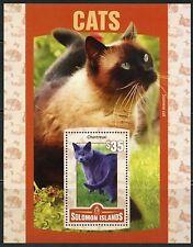 SOLOMON ISLANDS 2016 CATS  SOUVENIR SHEET MINT  NEVER HINGED