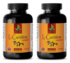Reduces Fatigue - L-CARNITINE 510mg - Pre Workout - Amino Acids - 2 Bottles