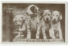 Dalmatians - Do come, I'll be on the Spot - Real Photo Postcard franked 1932