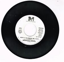 "Herminio Ramos  Junto a la Fuente del Patio       Single  7""   45"