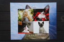 Katzen 13 2 cats Chats Tiere animals pets Fauna Block KB sheet postfrisch ** MNH