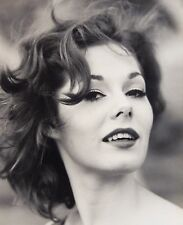 1960s Hollywood Star Glamour Girl B&W Photograph by Alfred Taylor 16x20