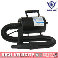 AEOLUS TD901T Grooming Dryer with Heater - New! Water Blower Blaster For Dog Pet