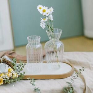 Glass Vase Tabletop Living Room Home Decorations Plant Holder Container Pot