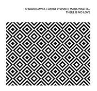 Rhodri Davies / David Sylvian / Mark Wastell - There Is No Love (NEW CD)