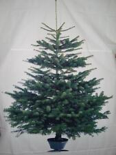 HOME KONTOR Tannenbaum Stoff Baum VINTER IKEA Weihnachten Deko ca.220x150 Neu