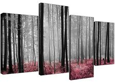 Canvas Pictures of Pink Forest Woodland Trees in Black and White
