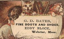 WEBSTER MA TRADE CARD, G D BATES BOOTS, EDDY BLOCK, 3 SWEET CATS & A DOG,  TC729