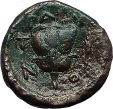 TRAGILOS in MACEDONIA 400BC Hermes Rose Authentic Ancient Greek Coin i58385