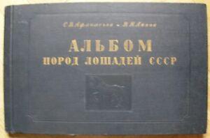1953 Album of horse breeds of USSR Rare Russian Soviet book