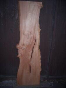 22 mm ged. Ulme - Rüster Brett gehobelt 1,71 m / 38 cm kammergetrocknet
