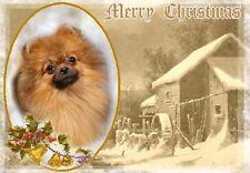 Pomeranian Dog A6 Christmas Card Design XPOM-6 by paws2print