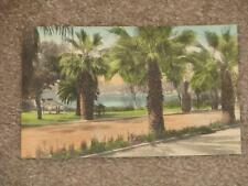 """The Lake in the Park """"Hand colored"""", 1934, Osprey, Fla., used vintage card"""