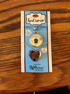 AngelStar Necklace Pendant Pet Dog Collar Charm Tag set 16101