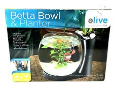 Elive .75 Betta Bowl And Planter New In Box