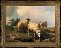 "Hand painted Old Master-Art Antique Oil Painting animal sheep on canvas 30""x40"""
