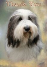 Bearded Collie Thank You Card By Starprint