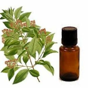 100% Essential Oil, your special blend, 1/2 once 15ml, tell us we will make it